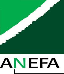 Logo anefa